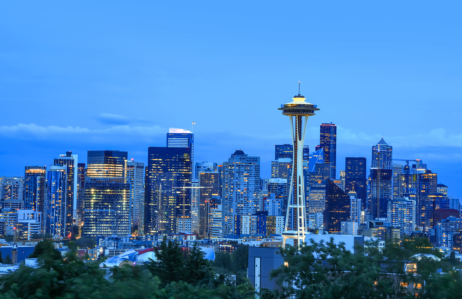 Seattle Skyline with Space Needle Waterfront